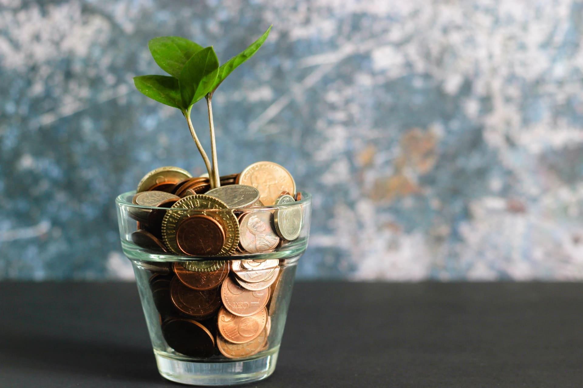 Rentabilizar ahorros